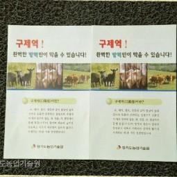 구제역 예방 리플렛