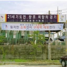 구제역 예방 플랭카드