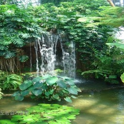 유메노시아 열대식물원 방문하여 현황,운영사례 등 자료수집