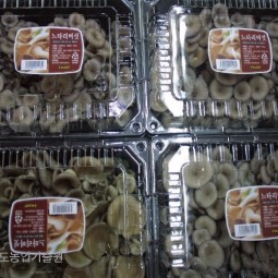 화성 머쉬매니아에서 생산한 느타리버섯들이 할인점에 납품하기 위해 소포장돼 있다.