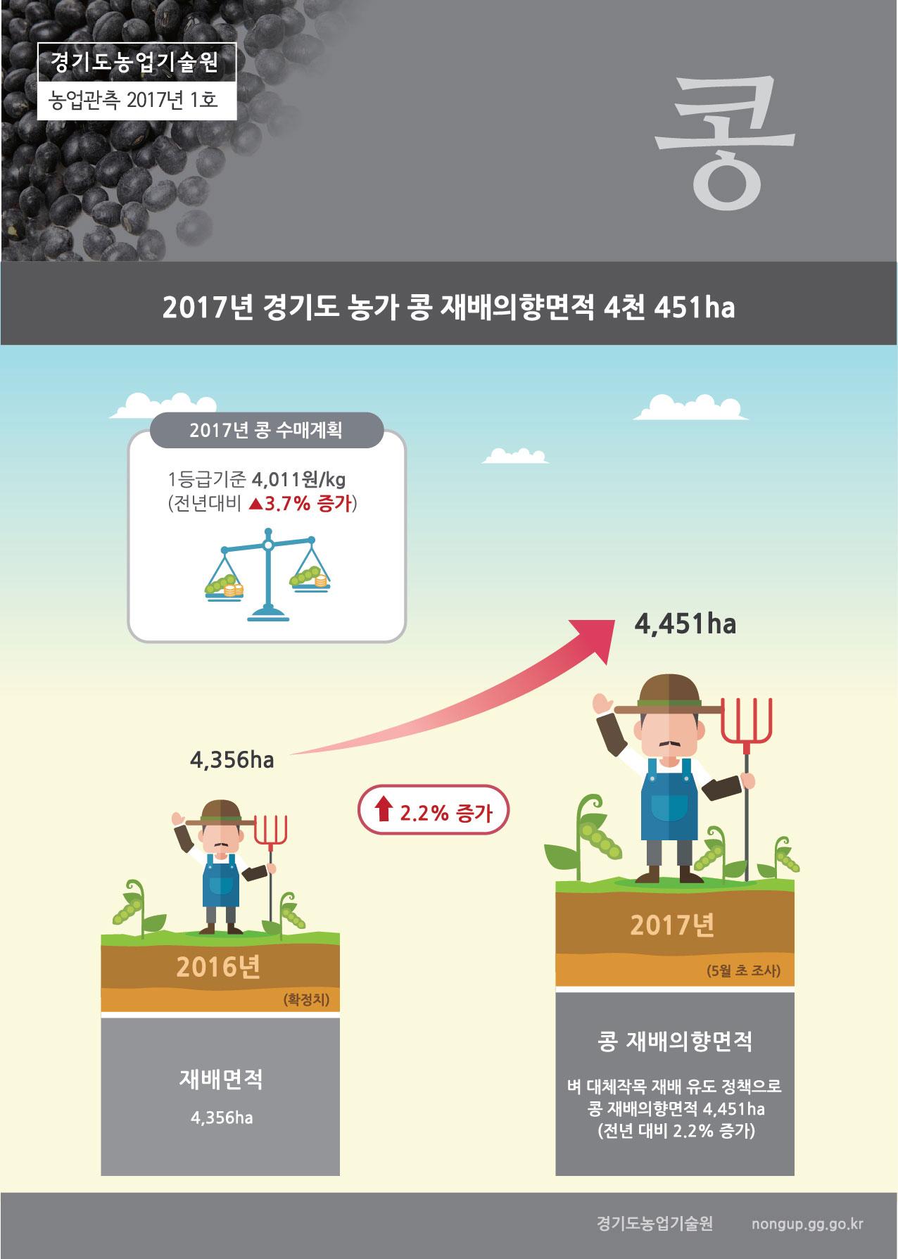 경기콩관측정보