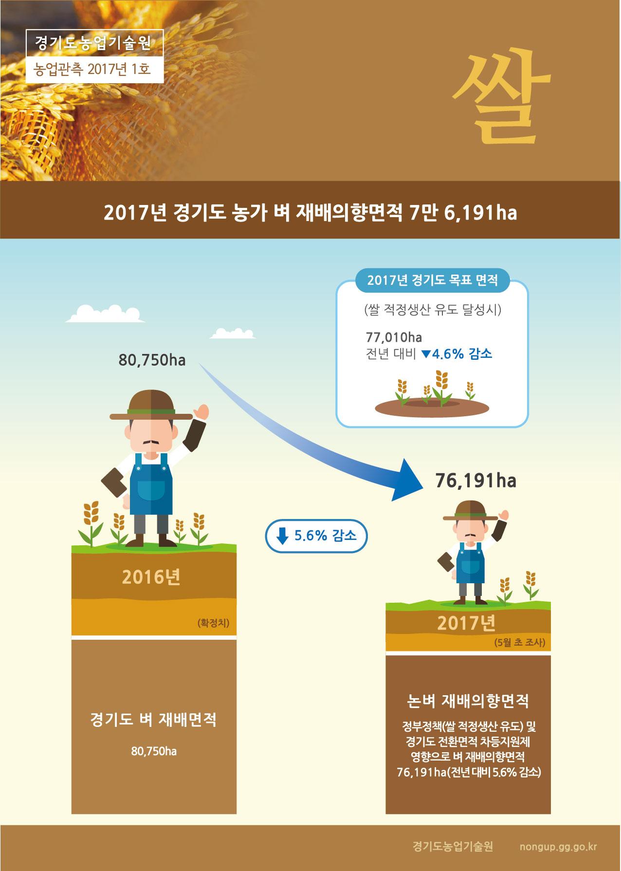 경기쌀관측정보