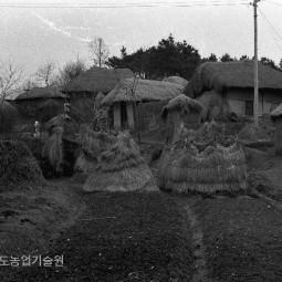 새마을운동이 본격적으로 시작된 1972년 농촌은 대부분 초가집이었다.